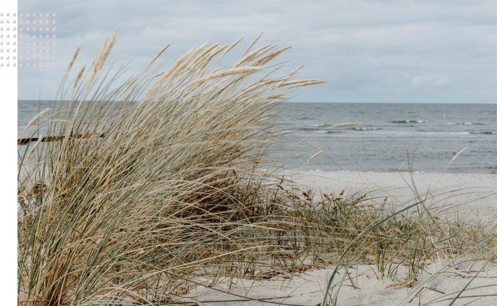 Vanuit de stilte - Ontdek onthaast en herstel - Meerdaags retreat retraite op Schiermonnikoog - Stilte bezinning en onthaasting