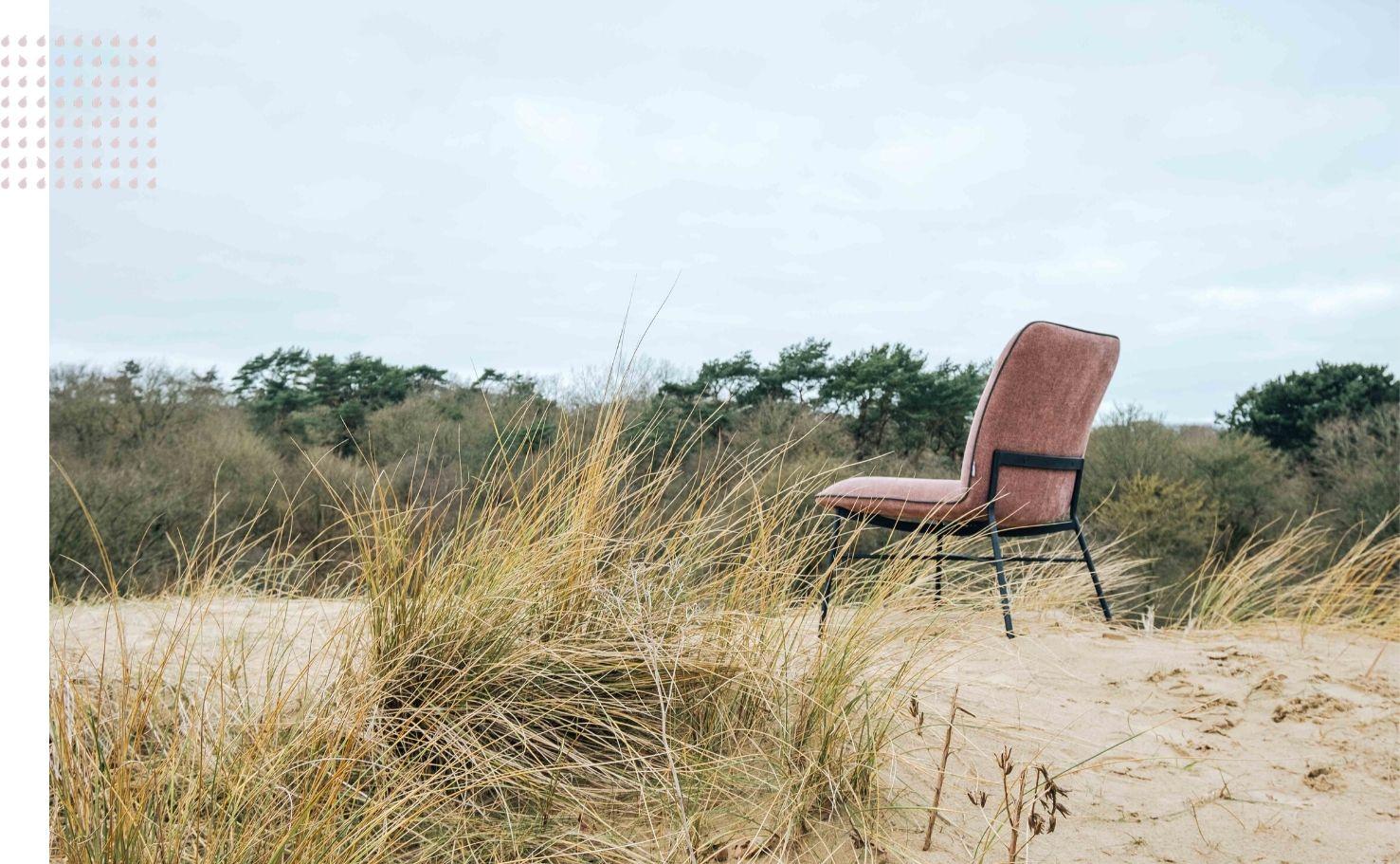Vanuit de stilte - Ontdek onthaast en herstel - Eendaags retreat in Meijendel - Stilte bezinning en onthaasting
